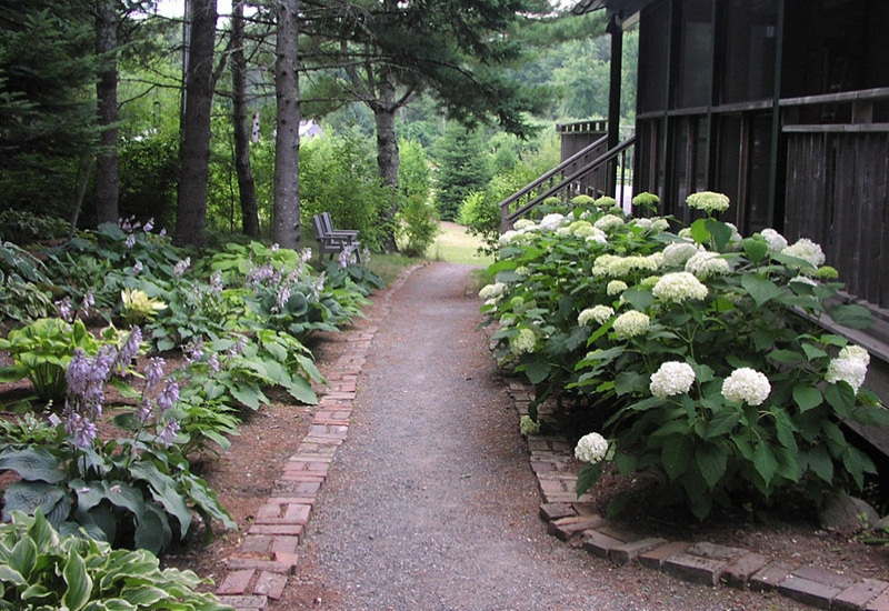 path with flowers blooming at Merryspring Nature Center - attractions in camden maine on the coast