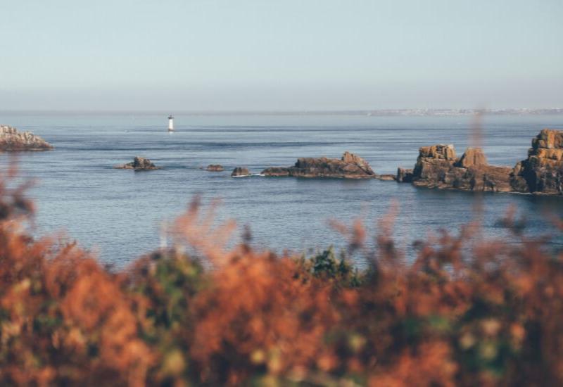 tips to help you enjoy the coastal maine fall foliage