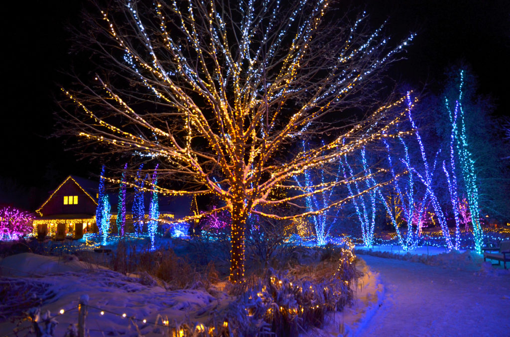 Gardens Aglow Maine - coastal Maine winter light display