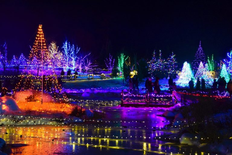Gardens Aglow Special Offer - Lights and Images from Gardens Aglow